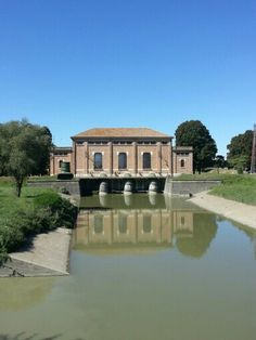 Oasi di #Campotto #Argenta #Ferrara