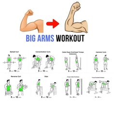 Here we shared with you step by step Workout (tips) guide tutorial. How to make your workout more perfect and just a right way. The workout probably makes your health massive, Big Back Workout, Big Biceps Workout, Step Workout, Workout Guide, Fitness Tips, Fitness Motivation, Arm Work, Bigger Arms, Weight Training Workouts