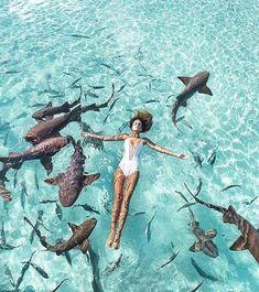 جرات این کار رو دارید  Would you dare to do it?  Exuma Bahamas...