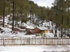Sierra de Durango 17Marzo 2014