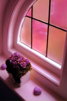 ♥pink window♥