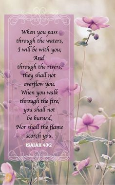 Come on in, sit a while and enjoy beautiful words of faith, family, love and more. Your thoughts are. Bible Verses Quotes, Bible Scriptures, Faith Quotes, Advice Quotes, Book Of Isaiah, Isaiah 43, Biblical Verses, Emotion, Favorite Bible Verses
