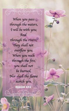 Cuando pases por las aguas, yo estaré contigo; y si por los ríos, no te anegarán. Cuando pases por el fuego, no te quemarás, ni la llama arderá en ti.  Isaías 43:2