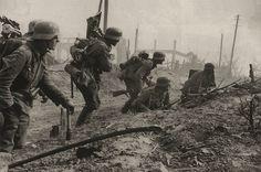 Stalingrad, Ostfront