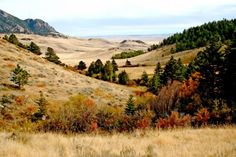 This Montana ranch for sale features productive pasture and hills with dark timber that lend themselves to excellent hunting opportunities. Read more about the Judith Mountain Ranch at Fay Ranches: http://fayranches.com/ranches-for-sale/montana/judith-mountain-ranch-lewistown-mt