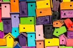 Bird Boxes by Jason Champney on 500px
