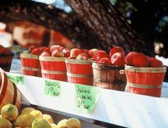 Visiting Julian, CA for Apples, Apple Pie, etc.  So fun!