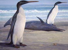Chris Gaskin's masterful life reconstruction of the fossil penguin Kairuku