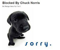 33 More Entertaining 404 Error Pages  -------------  Wil je minder 404's? of gewoon een betere website? Neem dan eens vrijblijvend contact op met Budeco http://budeco.nl/contact