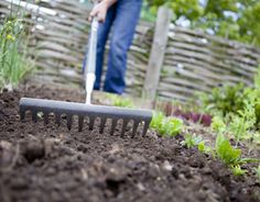 Ready to start your first garden