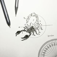 Geometric Beasts | Scorpion                                                                                                                                                     Plus