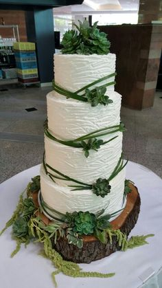 4 tier stacked wedding cake with fresh succulents and bear grass Specialty Cakes, Wedding Cakes, Succulents, Wisteria, Desserts, Cake Ideas, Food, Grass, Bear