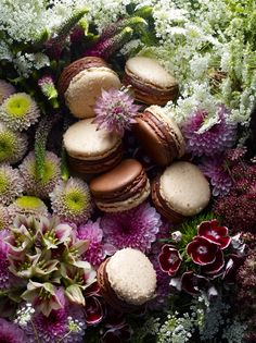 """""""In Jardin de Lou, a harmonious encounter between smooth milk chocolate ganache and flavoursome candied ginger. Macarons, Nectar And Stone, Milk Chocolate Ganache, French Macaroons, Pastry Shop, Cupcake Cookies, Macaroon Cookies, Cupcakes, Food Art"""