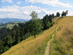 Unterwegs auf dem Napf. Rapunzel, Hiking, Country Roads, Camping, Day, Outdoor, Road Trip Destinations, Alps, Vacation