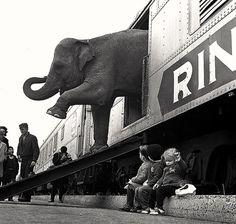 Bronx, New York 1963. Photo: Paul Rice.