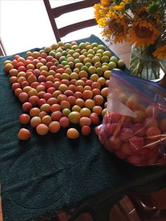 Plums from my orchard