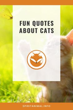 For the cat lover. Check out these inspirational quotes about cats. Click through now. #spiritanimals #animaltotems Cat Spirit Animal, Find Your Spirit Animal, Inspirational Cat Quotes, Man And Dog, Animal Totems, Best Quotes, Cat Lovers, Finding Yourself, Cats
