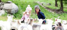 Amusement parks, aquariums, farm holidays, skiing lessons - come rain or shine, there is always plenty of things to do with the kids in Norway.