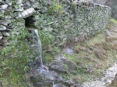 Łupkowe murki w Dolinie Douro