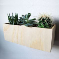 Succulents, herbs, and other small houseplants will feel right at home in this garden box. Crafted out of sustainable ash wood, these planters sit half an inch away from the wall for a pleasing floatin...  Find the Floating Garden Ash Planter, as seen in the Planters Collection at http://dotandbo.com/category/outdoor/plants-and-terrariums/planters?utm_source=pinterest&utm_medium=organic&db_sku=TWB0001-ash