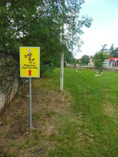 Cuneo e dintorni: Agility dog palestra