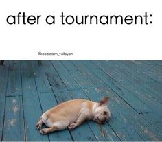 Just had a tournament and I am dead! But I dont play on Sunday so good luck to my team in our last game in Boise tomorrow! Volleyball Memes, Soccer Memes, Volleyball Quotes, Basketball Funny, Soccer Quotes, Sports Memes, Volleyball Players, Softball Tournaments, Football Humor