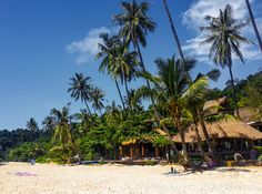 It can't get any better than this - Nature Beach Resort right on the sand of Koh Chang, Thailand Thailand Resorts, Thailand Travel, Beach Resorts, Koh Chang, Beautiful Places To Live, Nature Beach, Dolores Park, Scenery, Vacation
