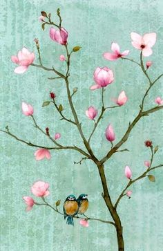 welcome spring: 2 birds in a cherry ? blossom tree.