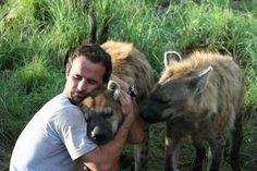*pssst!* Hey hyenas!