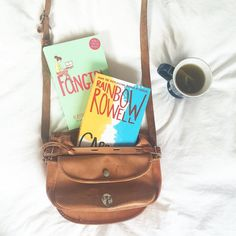 First off, on both of these books, I REALLY like the cover art. Second, I feel like Rainbow Rowell really understands fangirls. Fangirl represents what fangirls go through, no matter how old, every day. And of course, Carry On is basically a published gay fanfic. What's not to like?