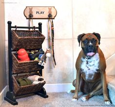 How to Create an Doggy Leash Holder for your Pup | Custom Dog Decor DIY Ideas | Modern Masters Step-by-Step Tutorial