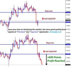 Save your time on Analysing the Forex market. Get help from Forex Experts team t