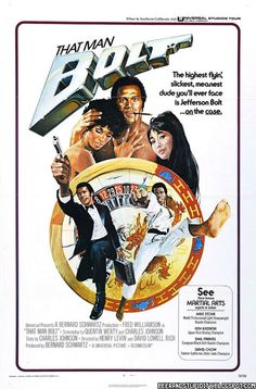 That Man Bolt: starring Fred Williamson, is the first spy film in this genre, combining elements of James Bond with martial arts action in an international setting. Action Film, Action Movies, Karate, Fred Williamson, African American Movies, Black Tv Shows, Movie Poster Art, Vintage Movies, 1970s Movies