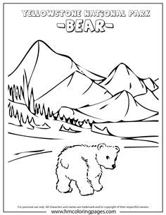 Cute Baby Bear At Yellowstone Park Coloring Page Visit Yellowstone, Yellowstone Camping, Yellowstone Vacation, Yellowstone National Park, National Parks, Travel Activities, Book Activities, Colouring Pages, Adult Coloring Pages
