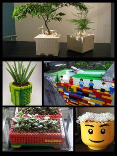 Jardineria on pinterest ideas para sons and cactus - Jardineria en casa ...