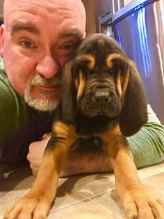 If you haven't loved a Bloodhound puppy you're truly missing out. http://ift.tt/2lOWcAU