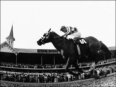#4 - Secretariat http://animals.howstuffworks.com/animal-facts/10-famous-racehorses1.htm