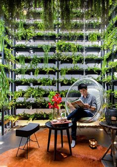 Vertical garden climbs over 7 meters in this astonishing townhouse designed in Bangkok by local design firm Apostrophy's. Green Architecture, Sustainable Architecture, Architecture Design, Indoor Garden, Indoor Plants, Vertikal Garden, Vertical Green Wall, Landscape Design, Garden Design