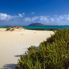 Place: #Corralejo, #Fuerteventura / Canary Islands, #Spain. Photo by Pietro Canali (flickr.com)