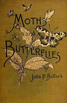 Moths And Butterflies by Julia P. Ballard (1) From: A Queiter Storm, please visit