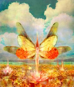 Image shared by Find images and videos about art and fairy on We Heart It - the app to get lost in what you love. Fantasy World, Fantasy Art, Fantasy Images, Dragonfly Art, Beautiful Fairies, Beautiful Things, Faeries, Elves, Fairy Tales