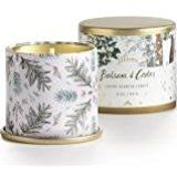 Amazon.com : Illume - Balsam & Cedar Large Tin Candle : Fragrance Collections Candles : Beauty