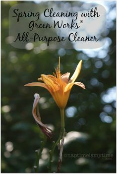 Spring Clean with @Greenworks Florist All Purpose Cleaner #client