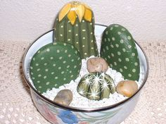 CAREFREE++CACTUS++GARDEN+++Hand+Painted+Rocks+by+reallyrocks