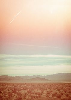 desert.. Reminds me if many of mine and Jim's trips across the western US! Love love love