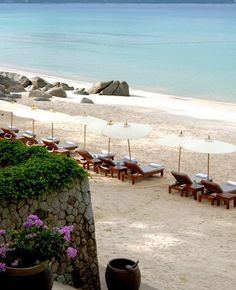 Stay at the luxurious Amanpuri in Phuket, Thailand, and work with a Virtuoso travel Advisor to receive your free upgrades and amenities. Thailand Beach Resorts, Luxury Beach Resorts, Thailand Honeymoon, Small Luxury Hotels, Phuket Thailand, Thailand Travel, Hotels And Resorts, Beach Hotels, Beaches In The World