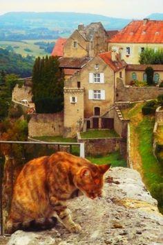 Jura, France.  The cat is definitely not optional.