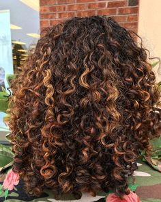 Are you searching for hair care tips? Dyed Curly Hair, Colored Curly Hair, Curly Hair Care, Curly Hair Styles, Natural Hair Styles, 3c Hair, Natural Hair Highlights, Mixed Hair, Hair Journey