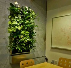 18 Best Eco Green Office Images Office Interior Design Office