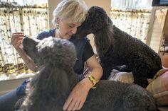 Sher Polvinale ya jubilada, dedica su vida a adoptar perros viejos y enfermos para darles mucho amor en sus últimos años.